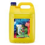 Seifenblasen Fertiglösung 5 Liter