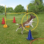 Agility Hundeparcours Ausstattung 14tlg.