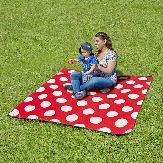 Picknick Decke Fliegenpilz