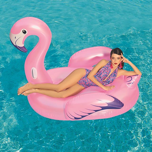 Schwimmender Riesen Flamingo