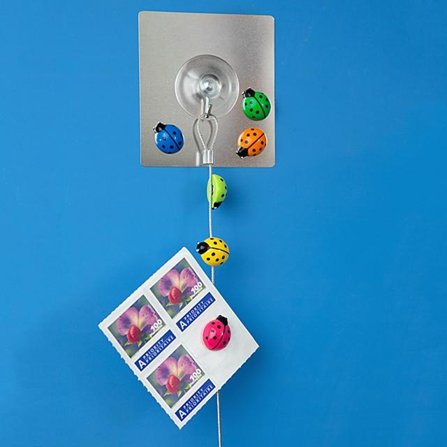 Magnet Fotohalter Glückskäferli