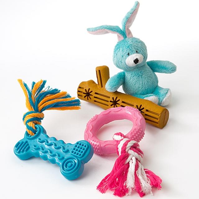 Hunde Spielzeug Set