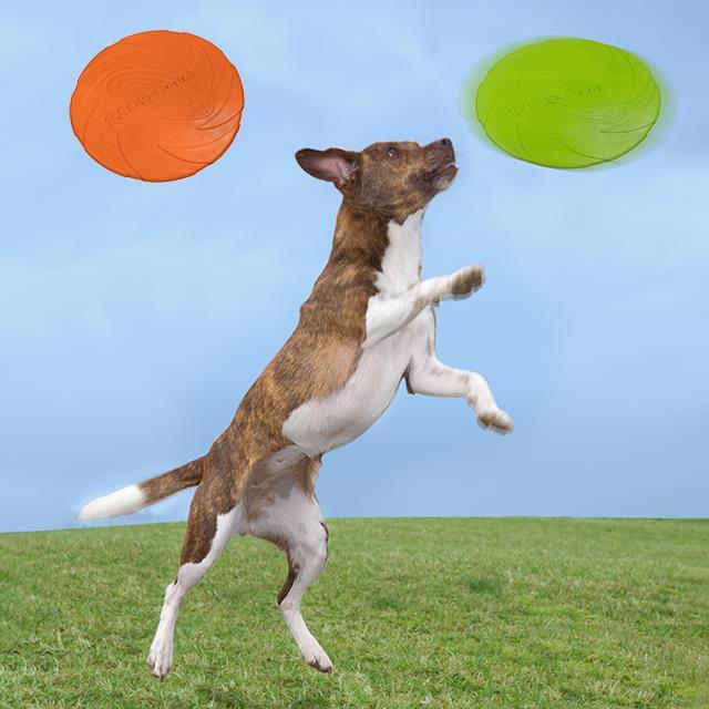 Hundefrisbee 2 Stk.